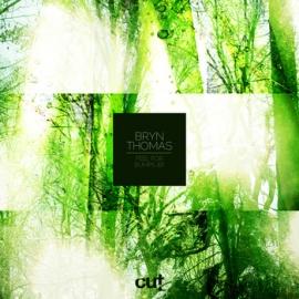 Bryn Thomas - Feel For Bumps EP