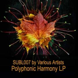 VA - Polyphonic Harmony LP