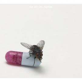 Red Hot Chili Peppers - I'm With You. Есть вещи, к которым не получается относиться однозначно.