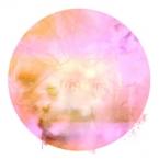 Kwala - Projectionss EP